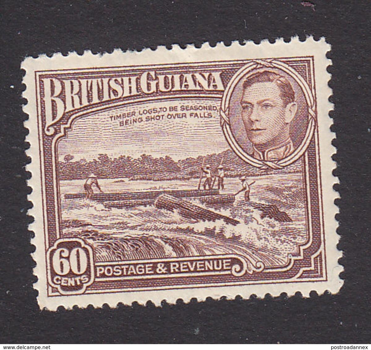 British Guiana, Scott #237, Mint Hinged, Shooting Logs, Issued 1938 - British Guiana (...-1966)