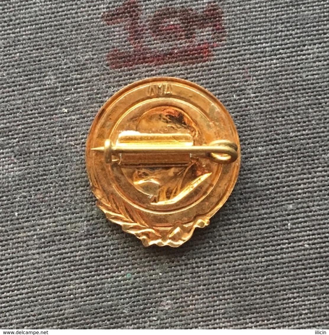 Badge (Pin) ZN006764 - Vladimir Ilyich Ulyanov Lenin Communist Russia Soviet Union (SSSR / CCCP / USSR) - Berühmte Personen