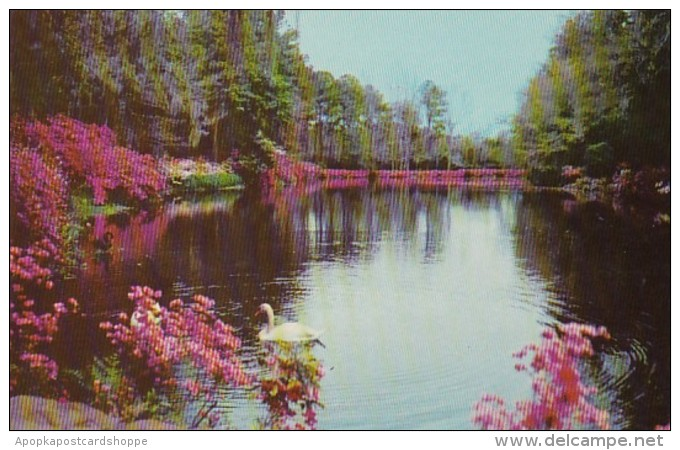 Alabama Mobile The Lake At Bellingrath Gardens