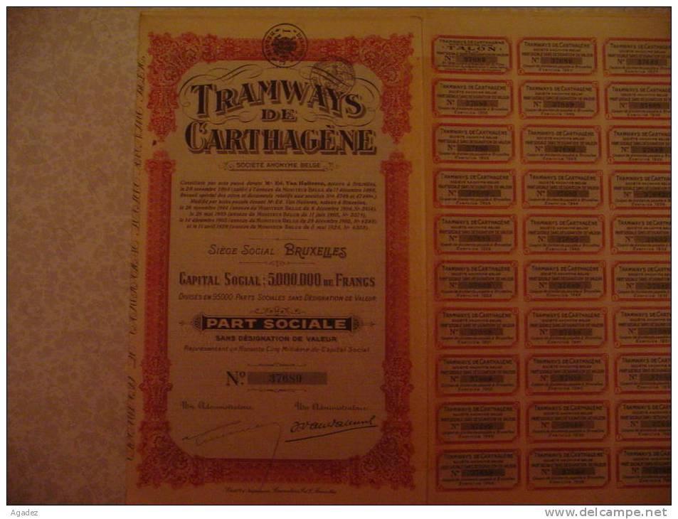 Part Sociale Tramways De Carthagene Espagne  1928.Spain - Chemin De Fer & Tramway