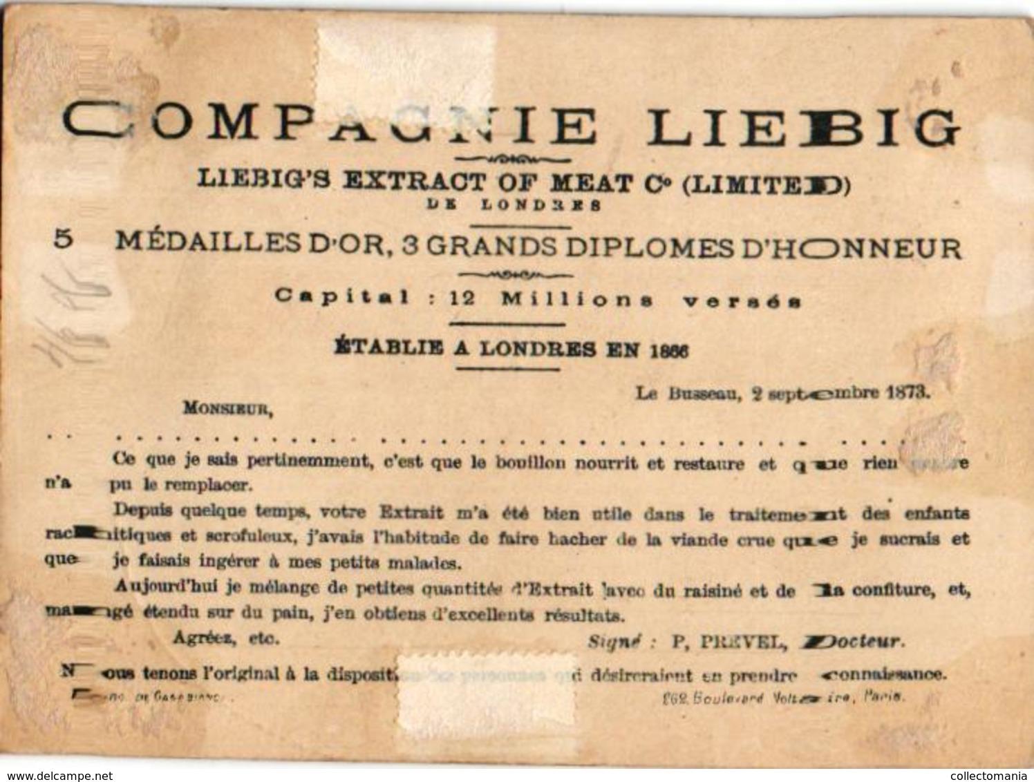 0034 LIEBIG's 34 -  8 Chromos 11X9cm Cartes Géographiques Et Monnaie - European Countries VERY RARE Set Anno 1874 - Liebig
