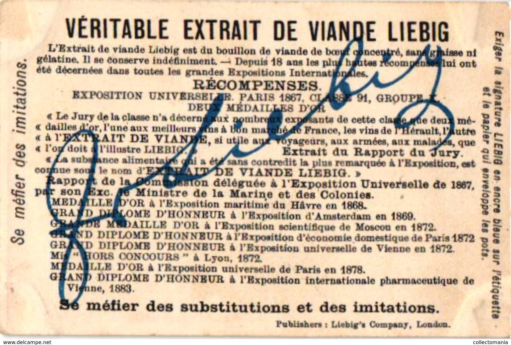0174 Fruits Et Têtes D'enfants - LIEBIG Nr 174 Complete Set Rare,  6 Litho Chromo Cards, C1875, Children Heads - Liebig