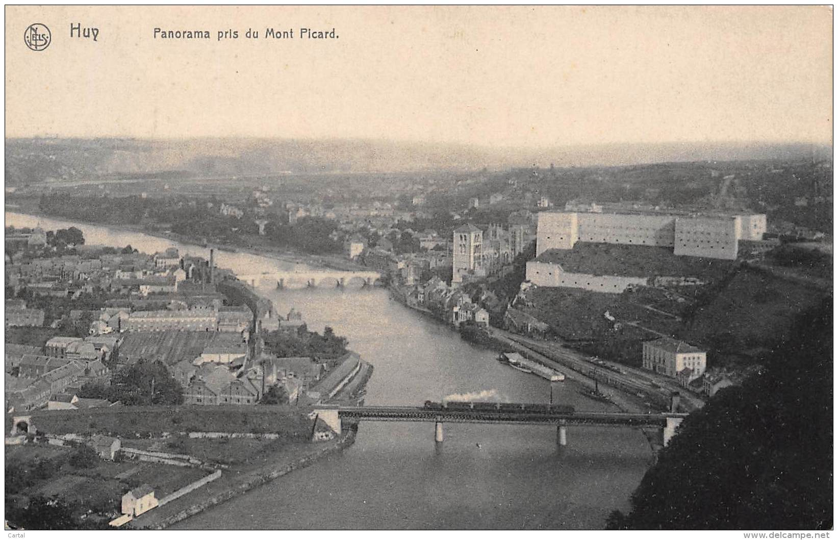 HUY - Panorama Pris Du Mont Picard - Huy