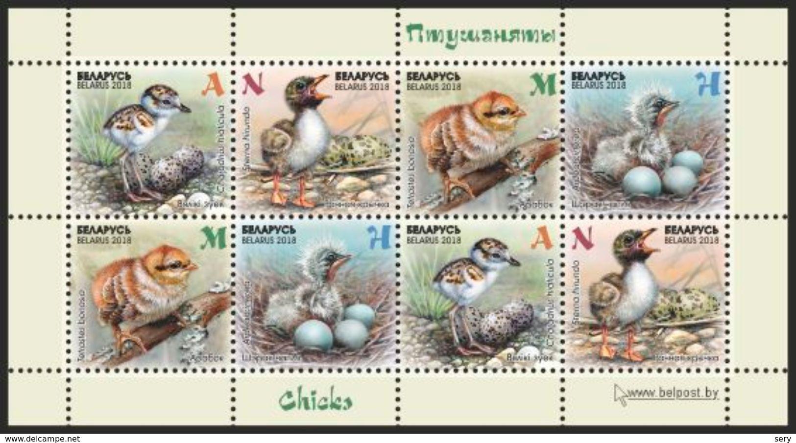 Belarus 2018 MS MNH Nestling, Fledgling, Baby Birds Oisillons Birds Bird Oiseaux Oiseau - Uccelli