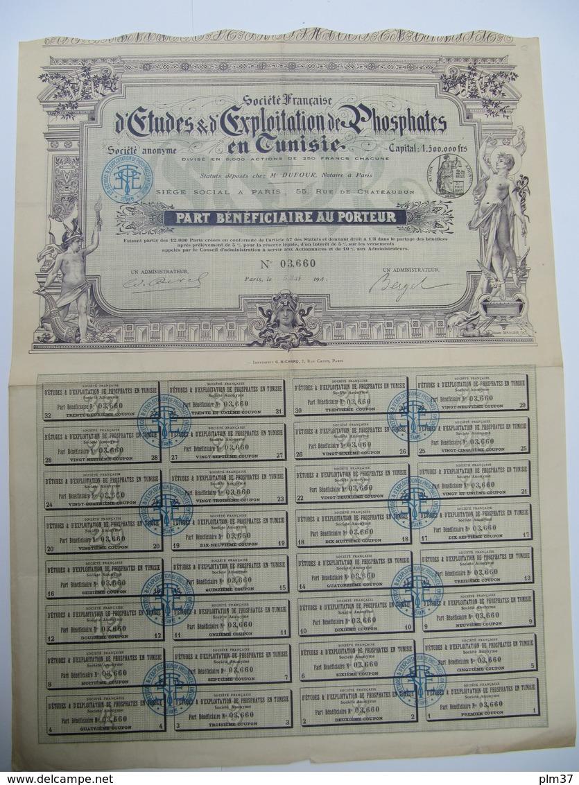 1 Action - TUNISIE - Société D'Etudes & D'Exploitation De Phosphates - PARIS, 1908 - Afrique