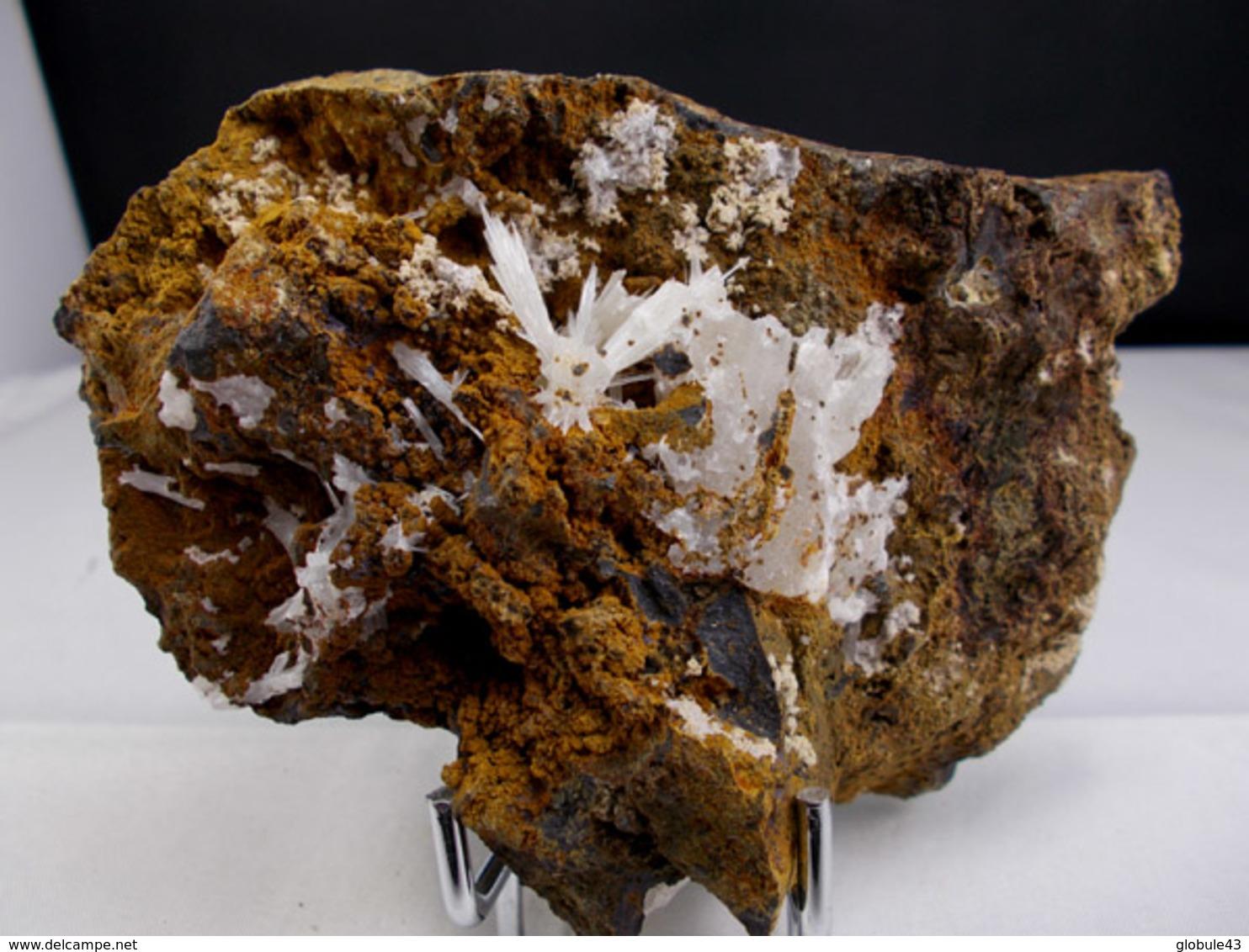 ARAGONITE EN GERBES SUR BASALTE 11, X 6,5 Cm CUREBOURSE - Minerals