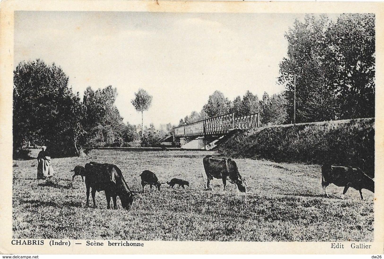 Chabris (Indre) - Scène Berrichonne: Vaches Au Pâturage Près De La Voie Ferrée - Edition Gallier, Carte Non Circulée - France
