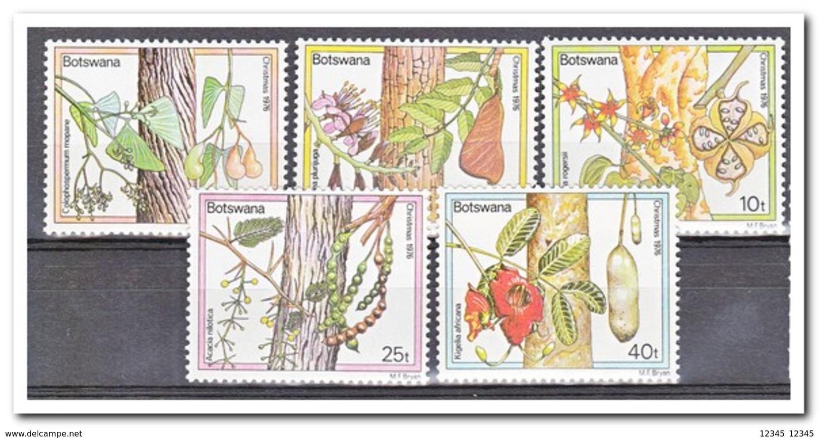 Botswana 1976, Postfris MNH, Trees, Christmas - Botswana (1966-...)