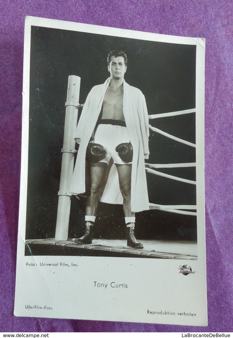 CARTE POSTALE PHOTO BOXE : CURTIS Tony - Boxe