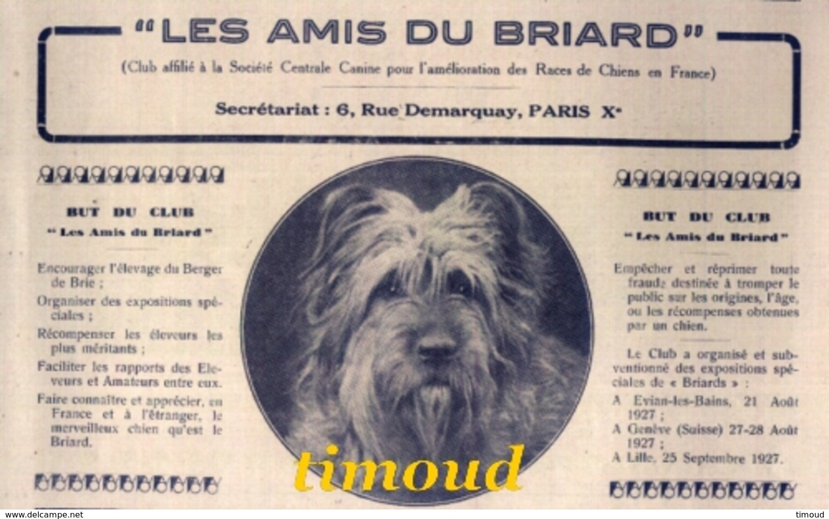 LES AMIS DU BRIARD / CLUB  RACE BERGER DE BRIE BRIARD / PARIS  / PUB 1927 - Unclassified