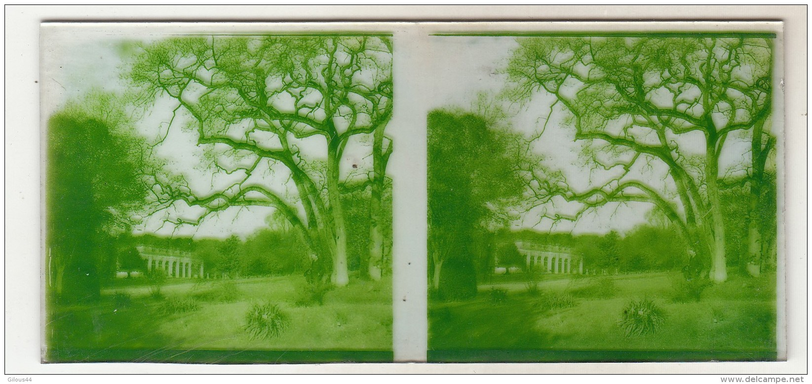 3 Photo Stereoscopique  Trianon Parc De Versailles - Plaques De Verre