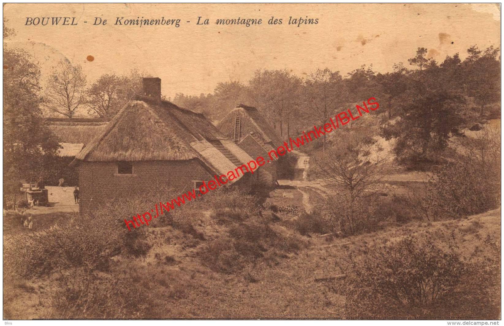 De Konijnenberg - La Montagne Des Lapins - Bouwel - Grobbendonk
