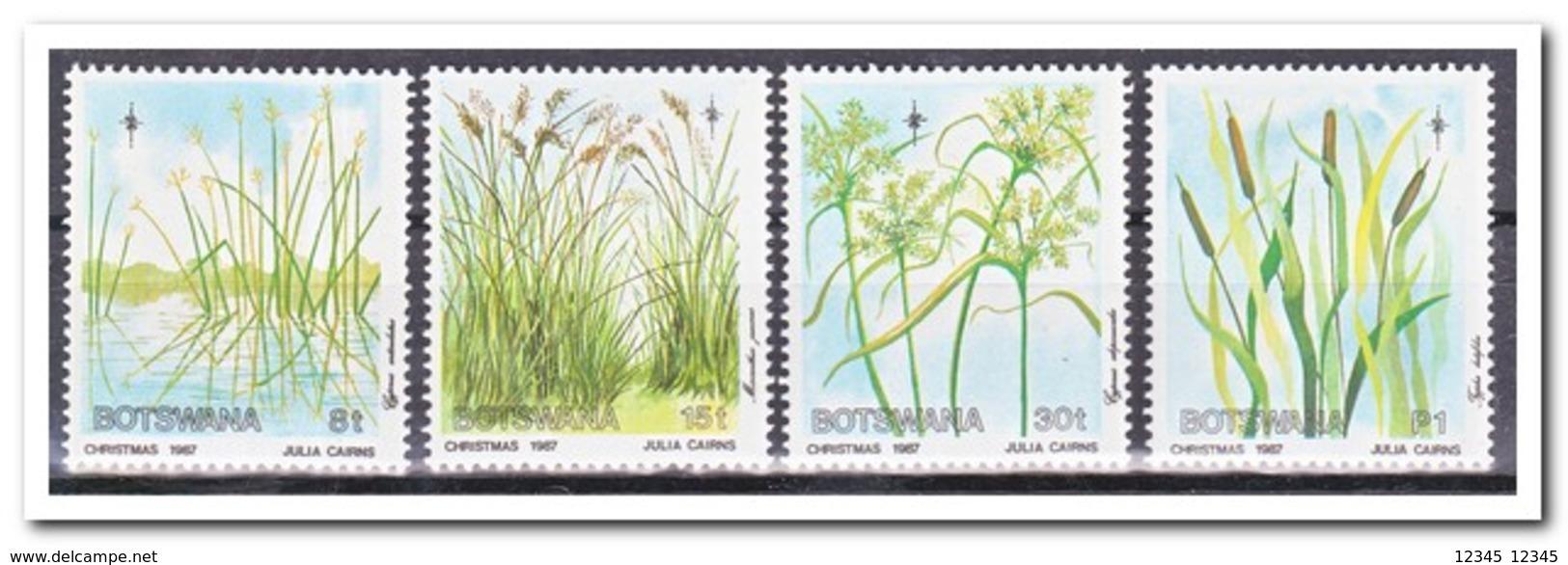 Botswana 1987, Postfris MNH, Plants, Christmas - Botswana (1966-...)