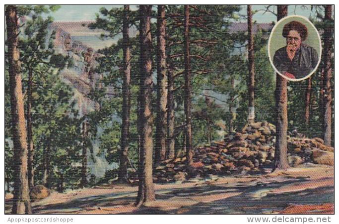 Colorado Colorado Springs Helen Hunt's Falls Seven Falls Curteic