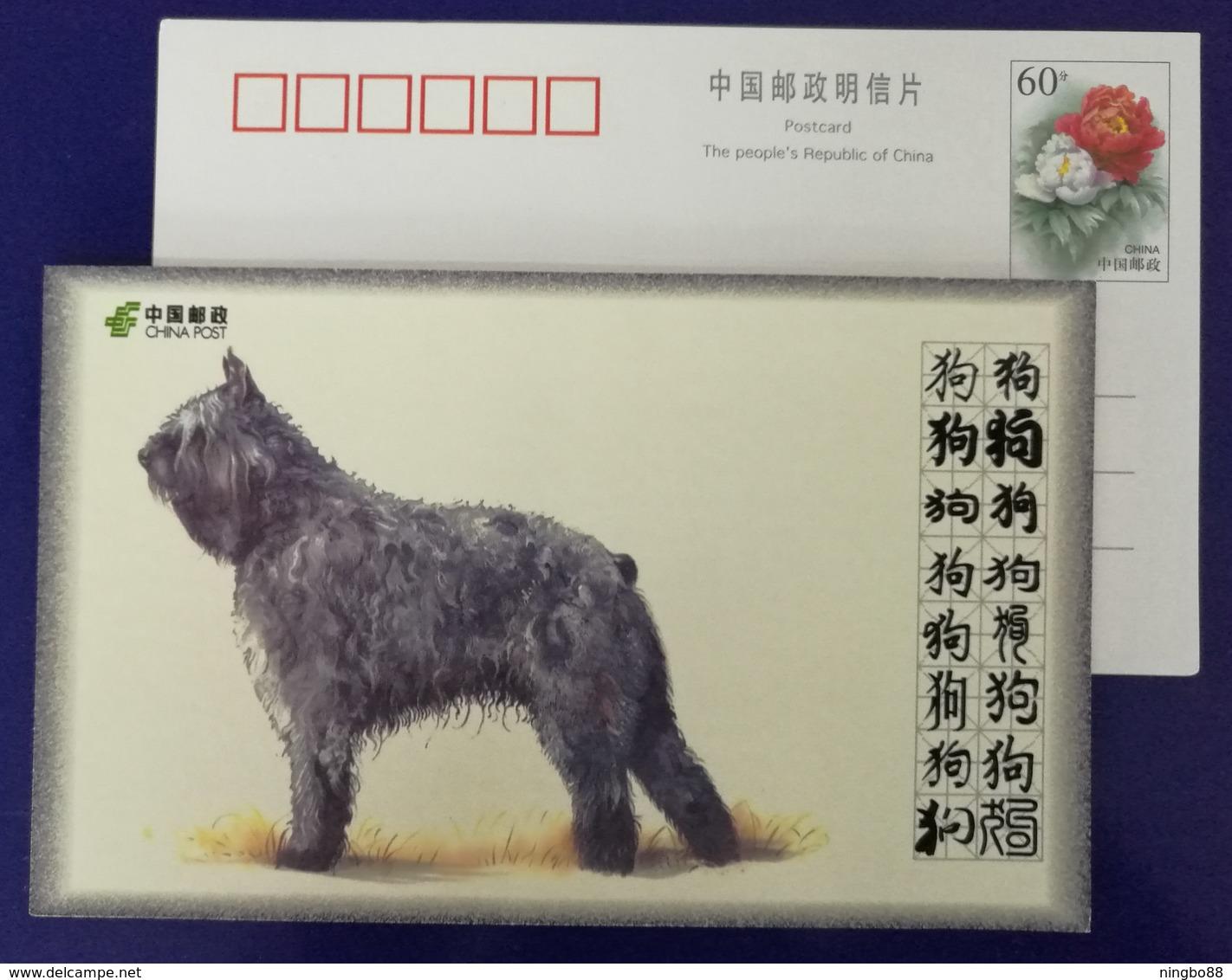 Bouvier Des Flandres Herding Dog,China 2008 World Famous Dog Advertising Pre-stamped Card - Dogs
