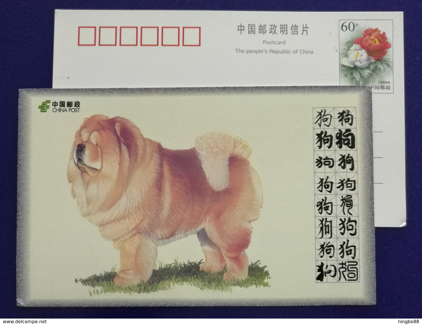 Chow Chow,China 2008 World Famous Dog Advertising Pre-stamped Card - Dogs
