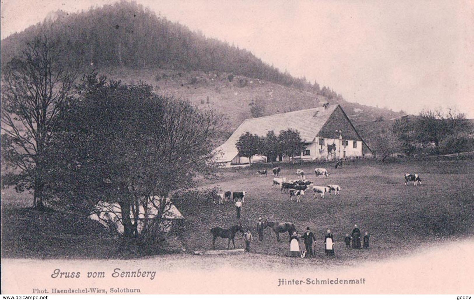 Gruss Vom Sennberg Hinter-Schmiedenmatt (28.11.1905) - SO Soleure