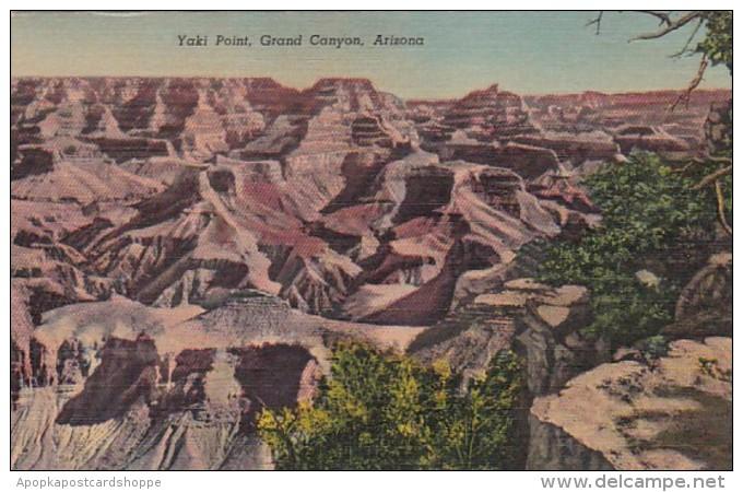 Arizona Grand Canyon Yaki Point 1954 Curteich