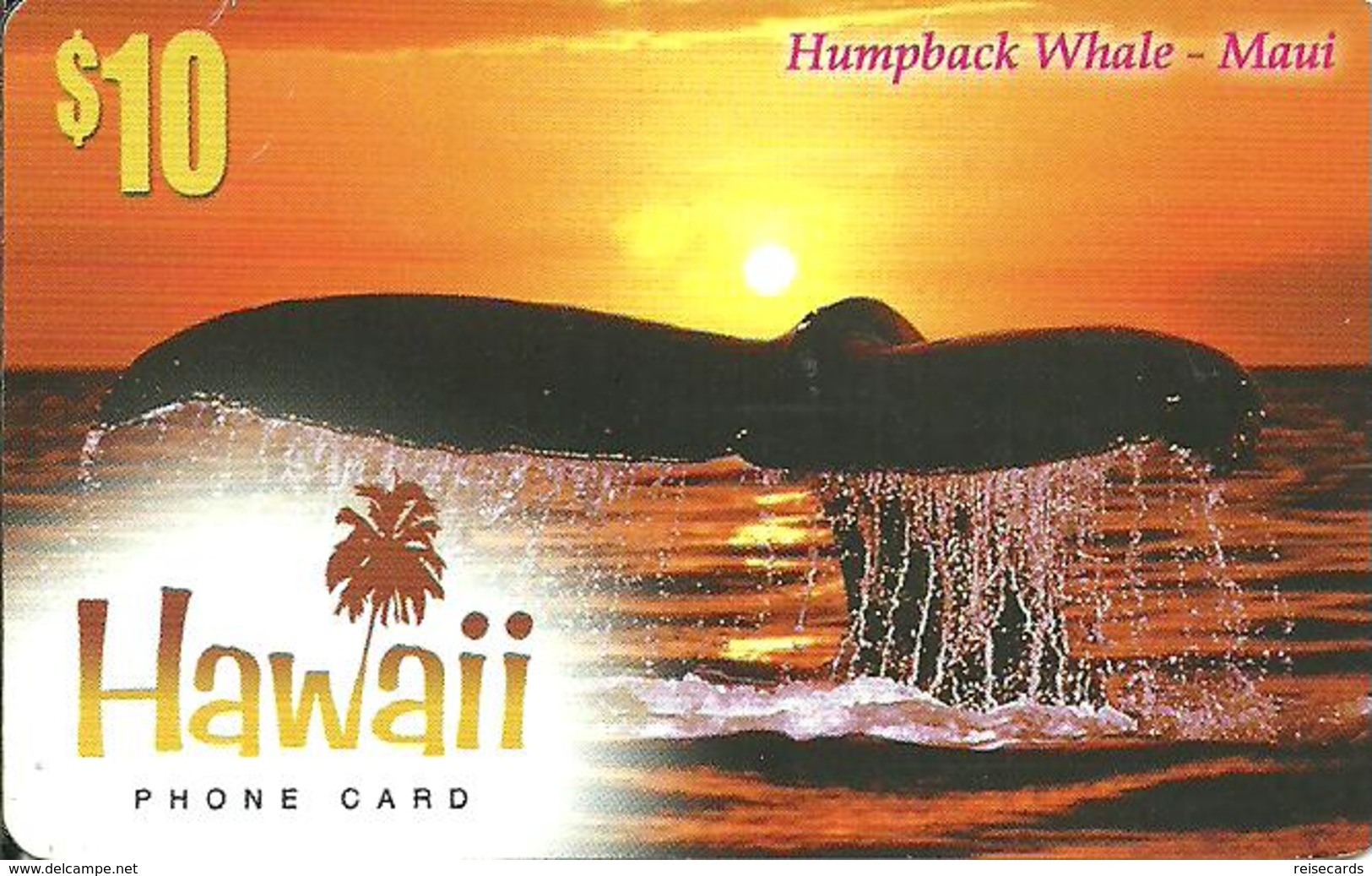 IDT: Hawaii Whale - Maui - Sonstige