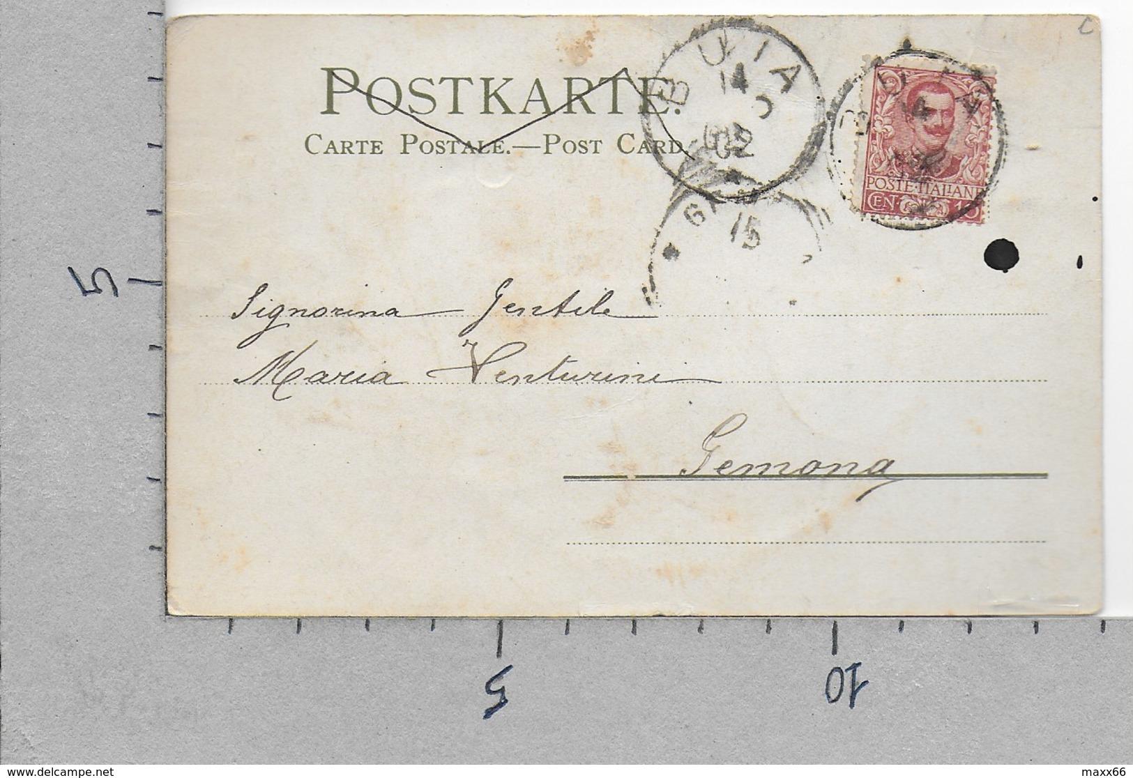 CARTOLINA VG ITALIA - Rose Selvatiche - Fiori Bianchi - WINKLER & SCHORN - 9 X 14 - ANN. 1902 BUIA GEMONA - Fleurs