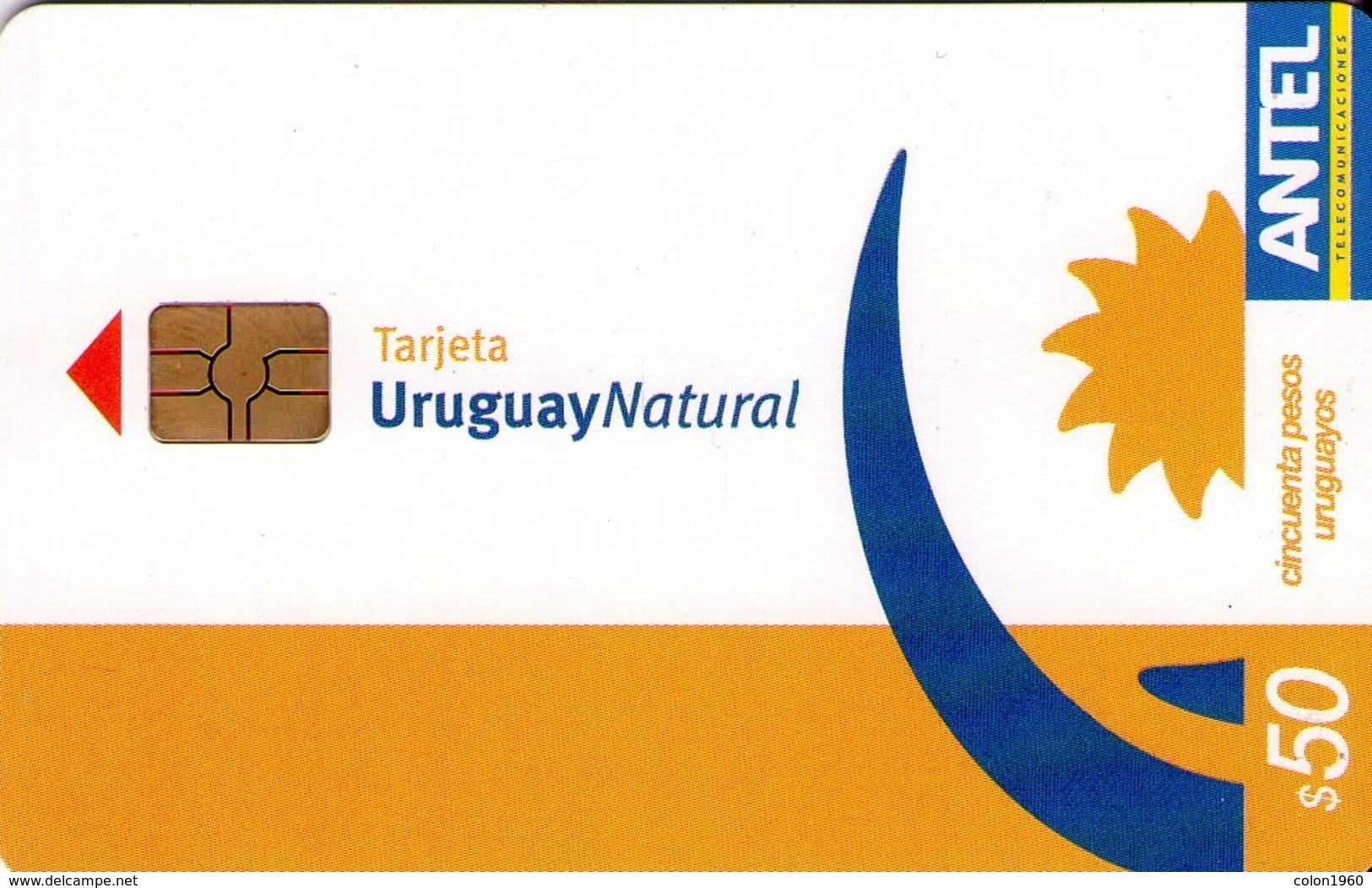 TARJETA TELEFONICA DE URUGUAY, 307a (199) URUGUAY NATURAL - Uruguay