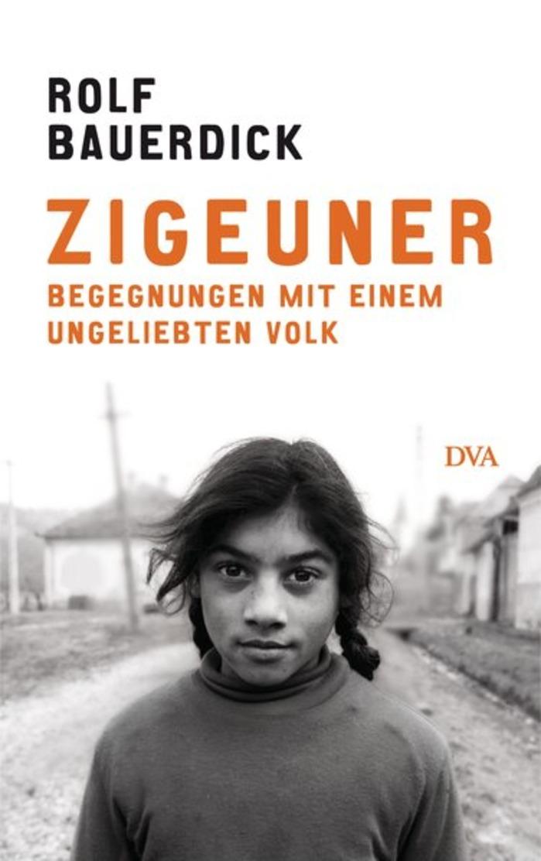 Zigeuner: Begegnungen Mit Einem Ungeliebten Volk - Otros