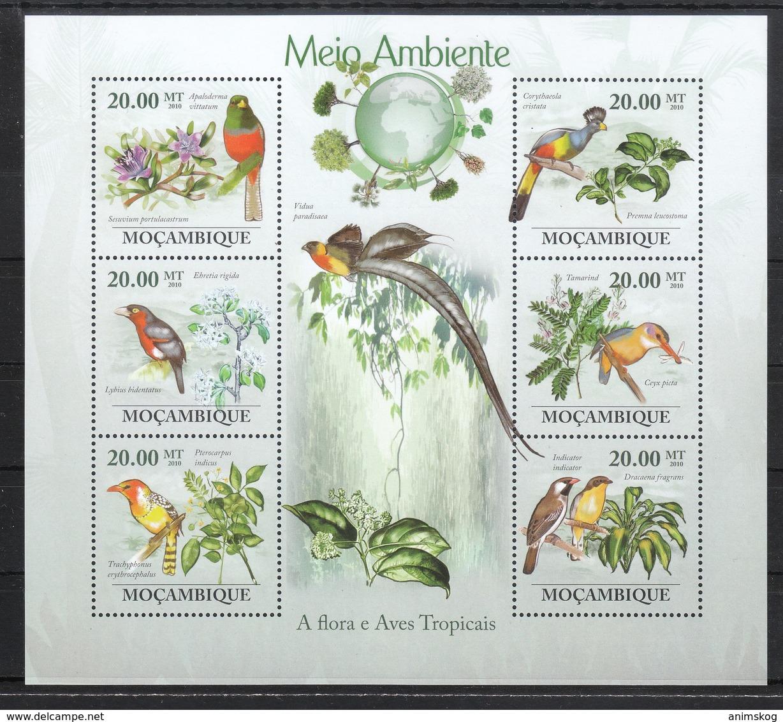 Mocambique 2010**, Umweltschutz, Sukkulenten / Mocambique 2010, MNH, Environmental Protection, Succulents - Sukkulenten