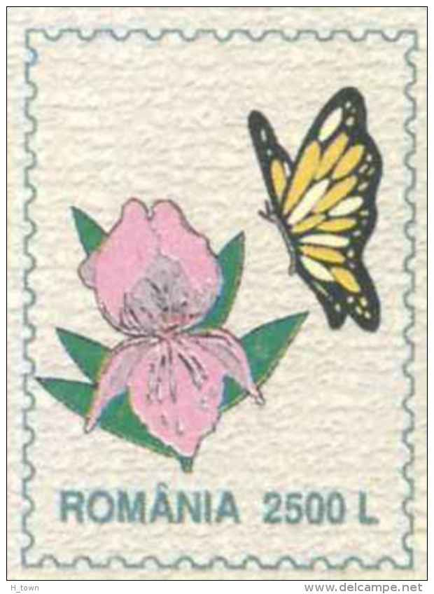 6178  Papillon, Narcisse Jaune, Fleurs: PAP 2002 - Wild Daffodil Flowers Stationery Cover, Butterfly On Imprinted Stamp - Schmetterlinge
