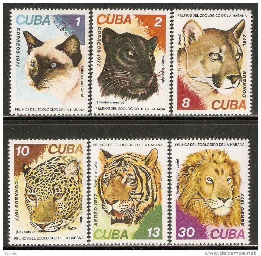 1977 Mi# 2257-2262 ** MNH - Felines - Felini