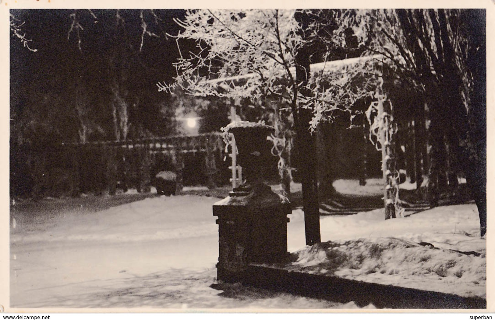 BASARABIA : CHISINAU / KISHINEV / KICHINEW : GRADINA PUBLICA - CARTE VRAIE PHOTO / REAL PHOTO ~ 1935 - '38 - RRR (ab766) - Moldavie