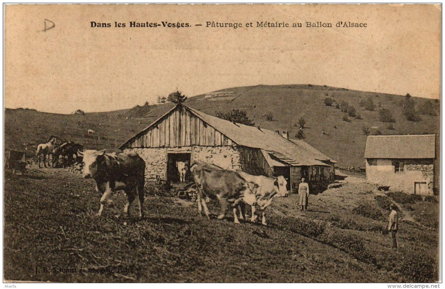 CPA Dans Les Hautes-Vosges Paturages Et Métairie Au Ballon D'Alsace (722727) - Other Municipalities