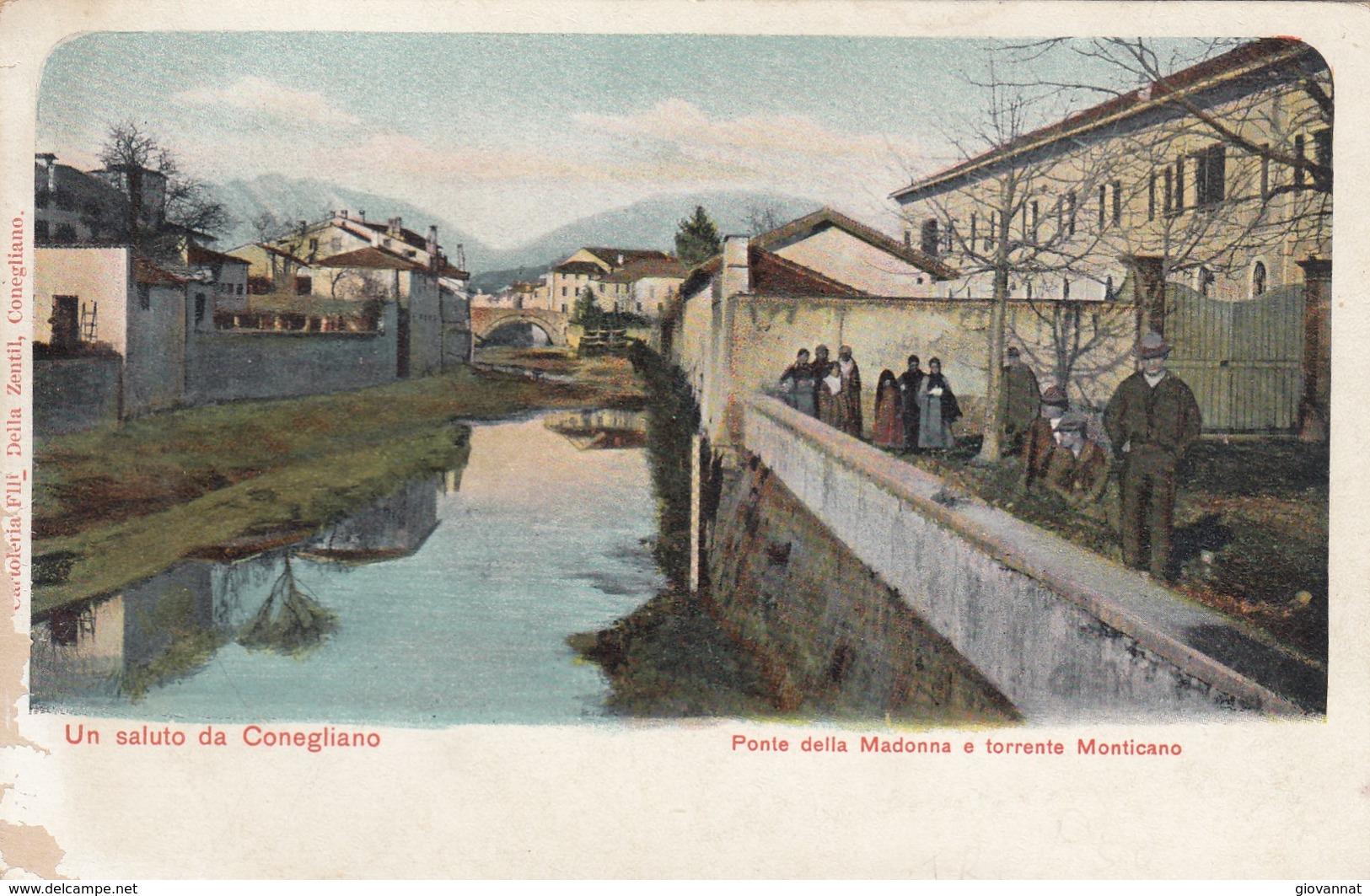 UN SALUTO DA CONEGLIANO   -VEDUTA - Treviso