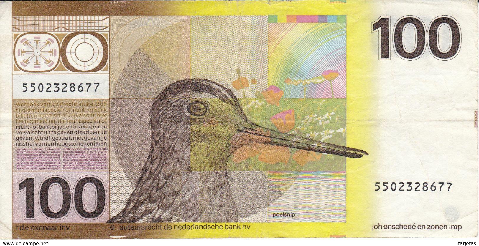 BILLETE DE HOLANDA DE 100 GULDEN DEL AÑO 1977  (BANKNOTE) PAJARO-BIRD - [2] 1815-… : Royaume Des Pays-Bas