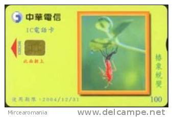 = TAIWAN - IC 00C046  =  MY COLLECTION - Taiwan (Formosa)