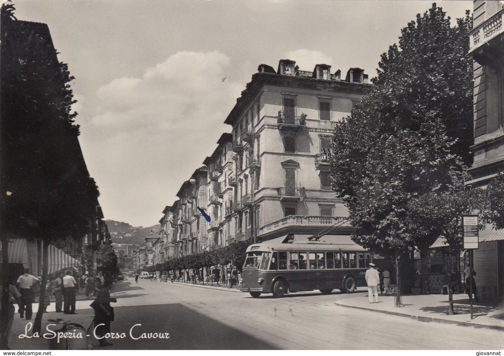 LA SPEZIA-CORSO CAVOUR -BUS   -VEDUTA- - La Spezia