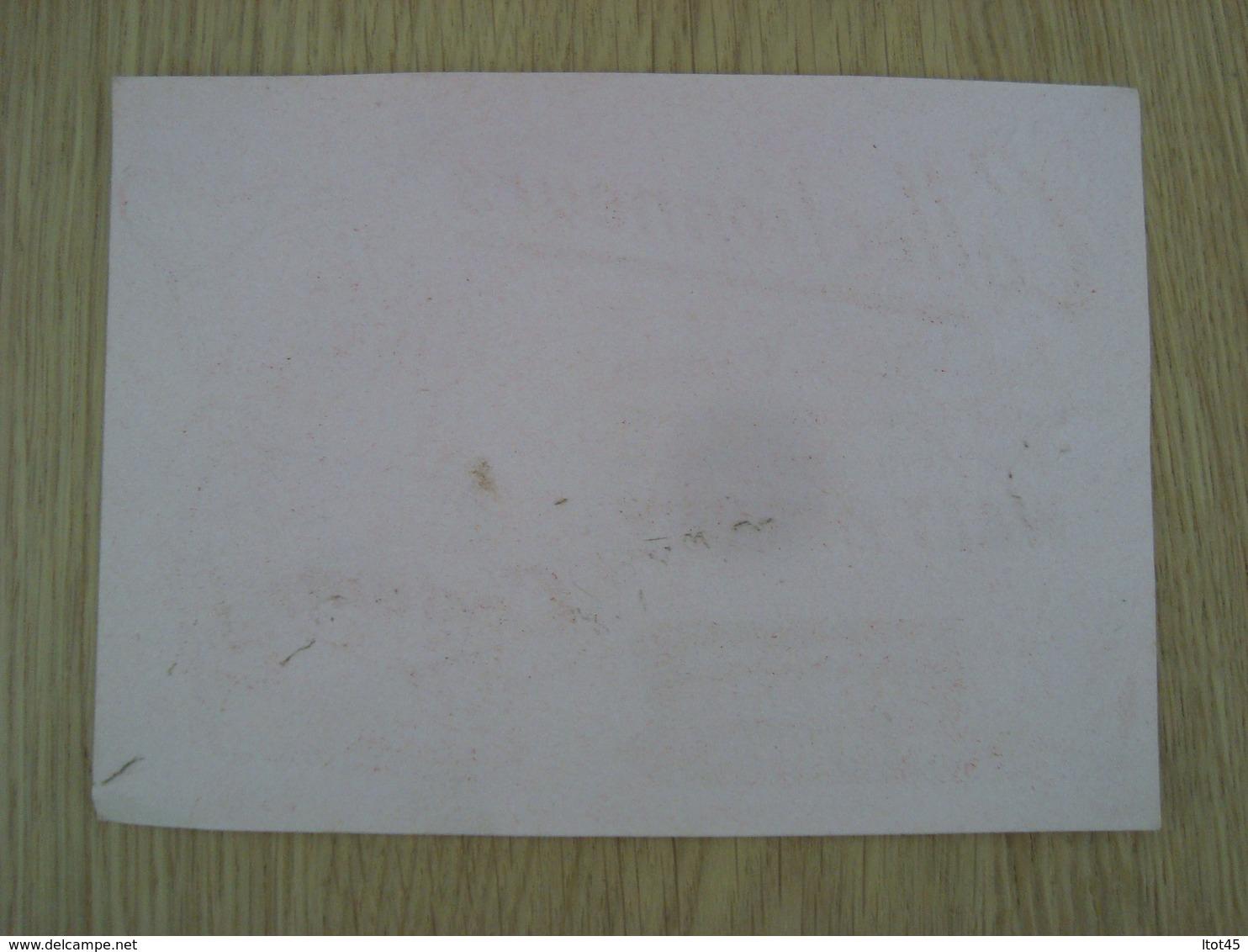 BUVARD SAVON CADUM WALT DISNEY - Buvards, Protège-cahiers Illustrés