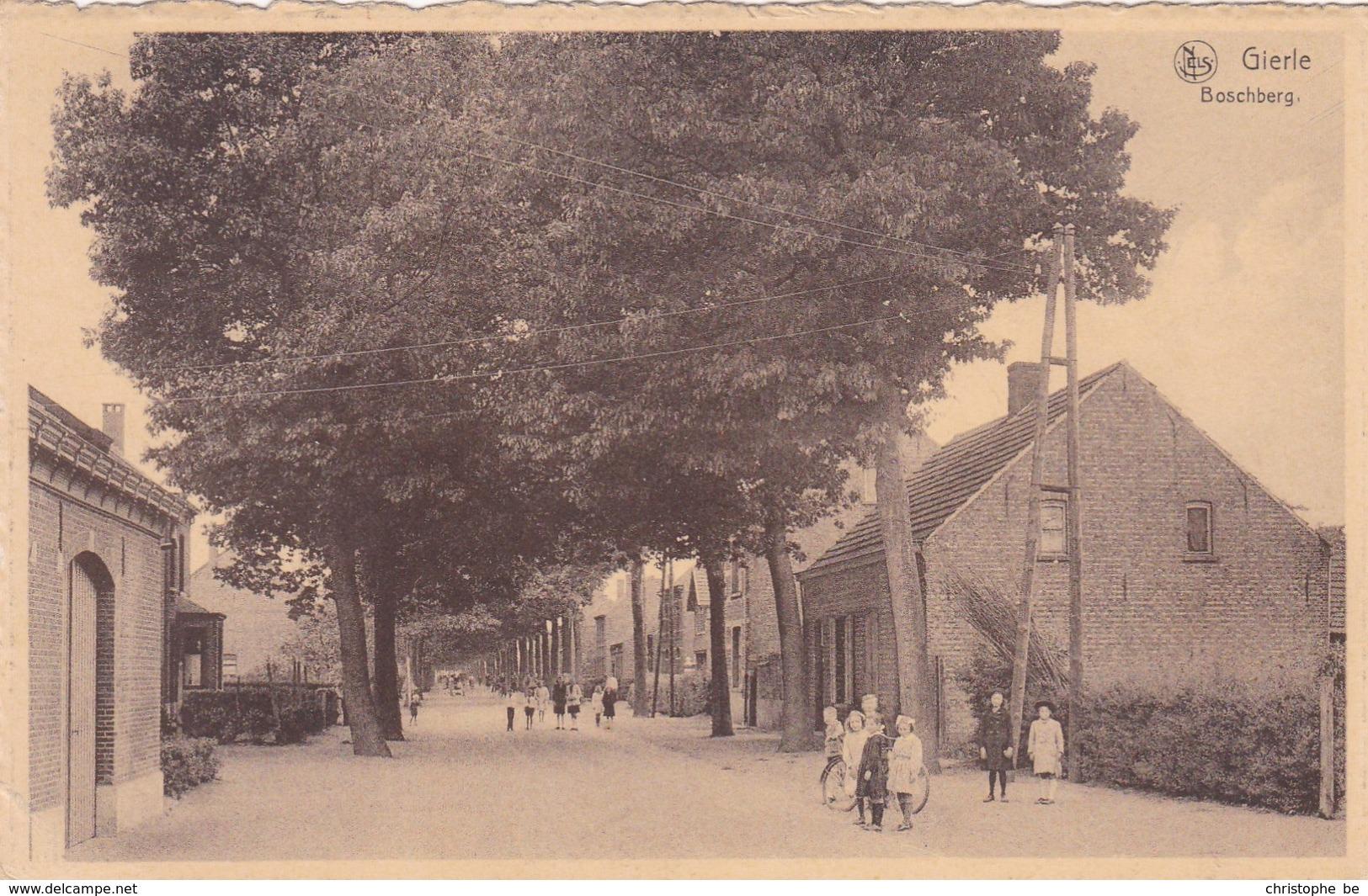 Gierle, Boschberg (pk47000) - Lille
