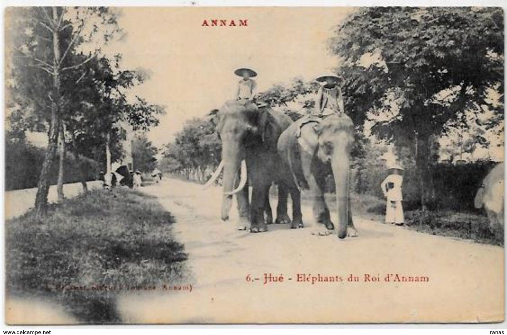 CPA éléphant ELEPHANT Non Circulé Annam Hué Asie - Elephants