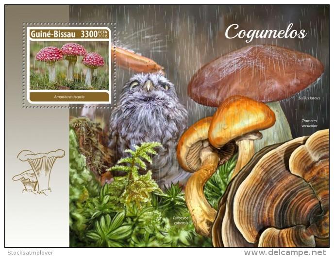 Guinea Bissau 2018 S201805  Mushrooms - Guinée-Bissau