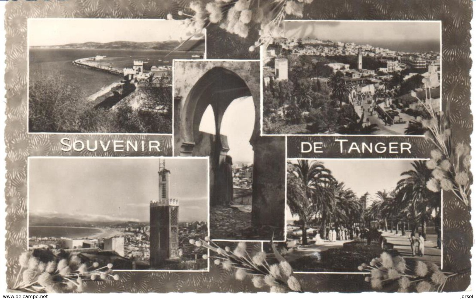 POSTAL   TANGER  -MARRUECOS  - SOUVENIR DE TANGER  (RECUERDO DE TANGER) - Tanger