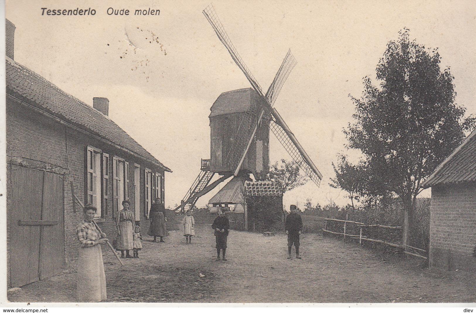 Tessenderlo - Oude Molen En Omgeving - Geanimeerd - 1910 - Uitg. J. Erschiert & J. Feyen Tessenderloo - Windmills
