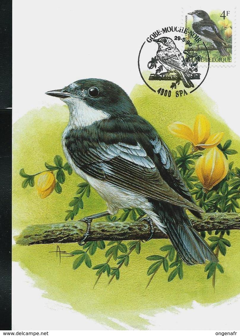 CM Du N° 2653/4 Grive Mauvis - Koperwiek Et Gobemouche Noir - Bonte Vliegenvanger   Obl: Spa 29/05/96 - 1985-.. Pájaros (Buzin)