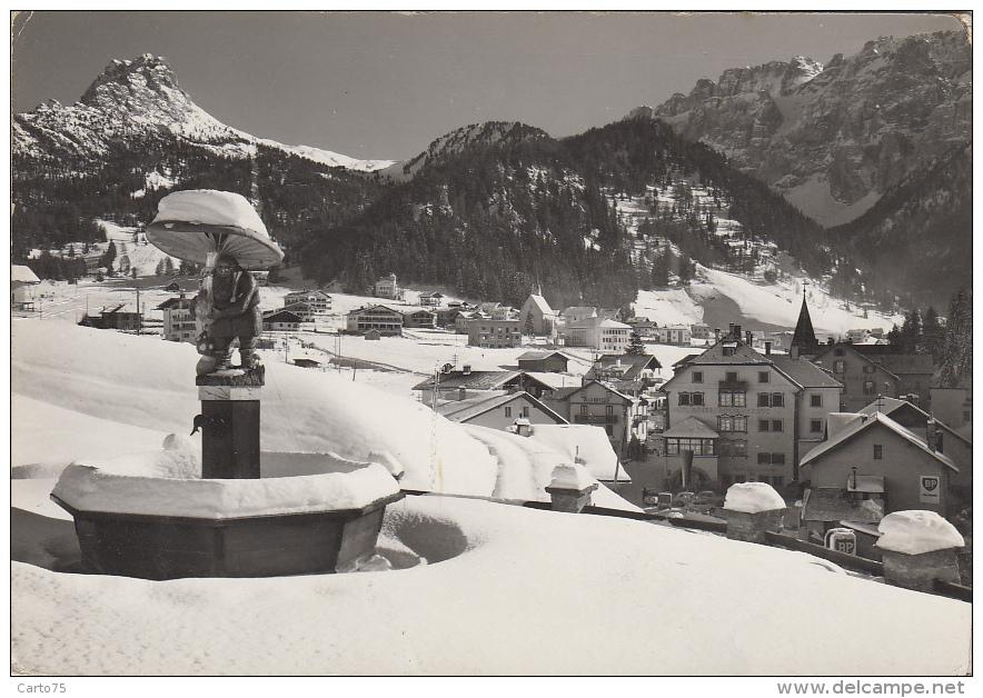 Italie - Selva Di Val Gardena - Panorama Village - Fontaine Champignon - 1963 - Bolzano (Bozen)