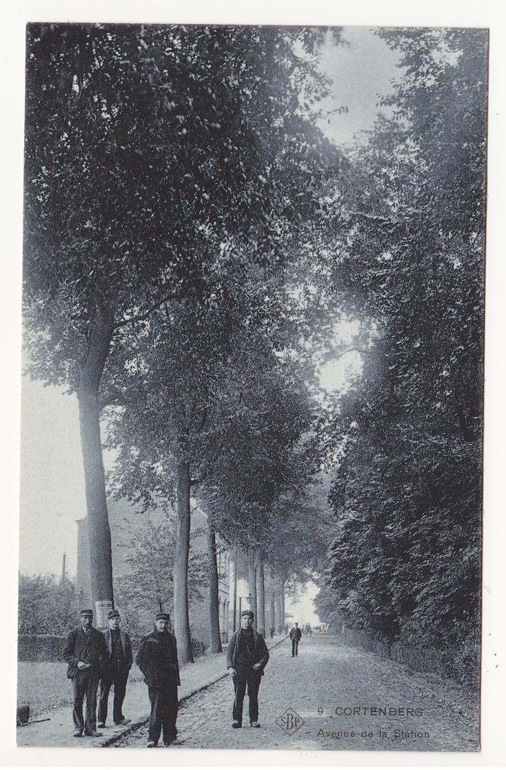 Kortenberg: Avenue De La Station. SBP 9. - Kortenberg
