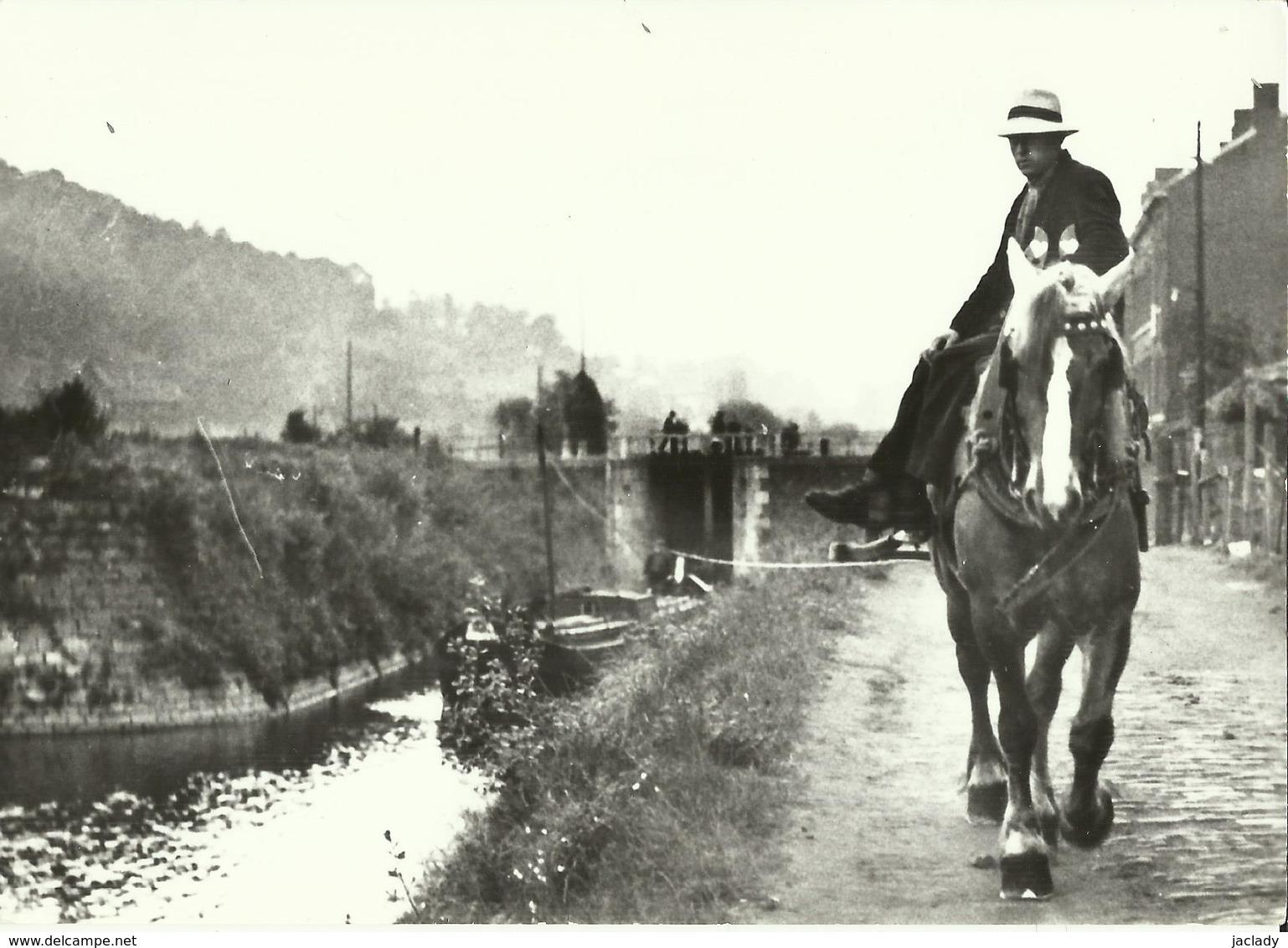 Liége (Streupas 1929) -- Le Dernier Cheval De Halage De L' Ourthe Tirant Un Hèrna.    (2 Scans) - Liege