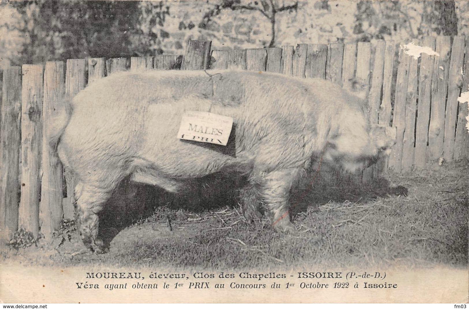 Issoire Cochon - Issoire