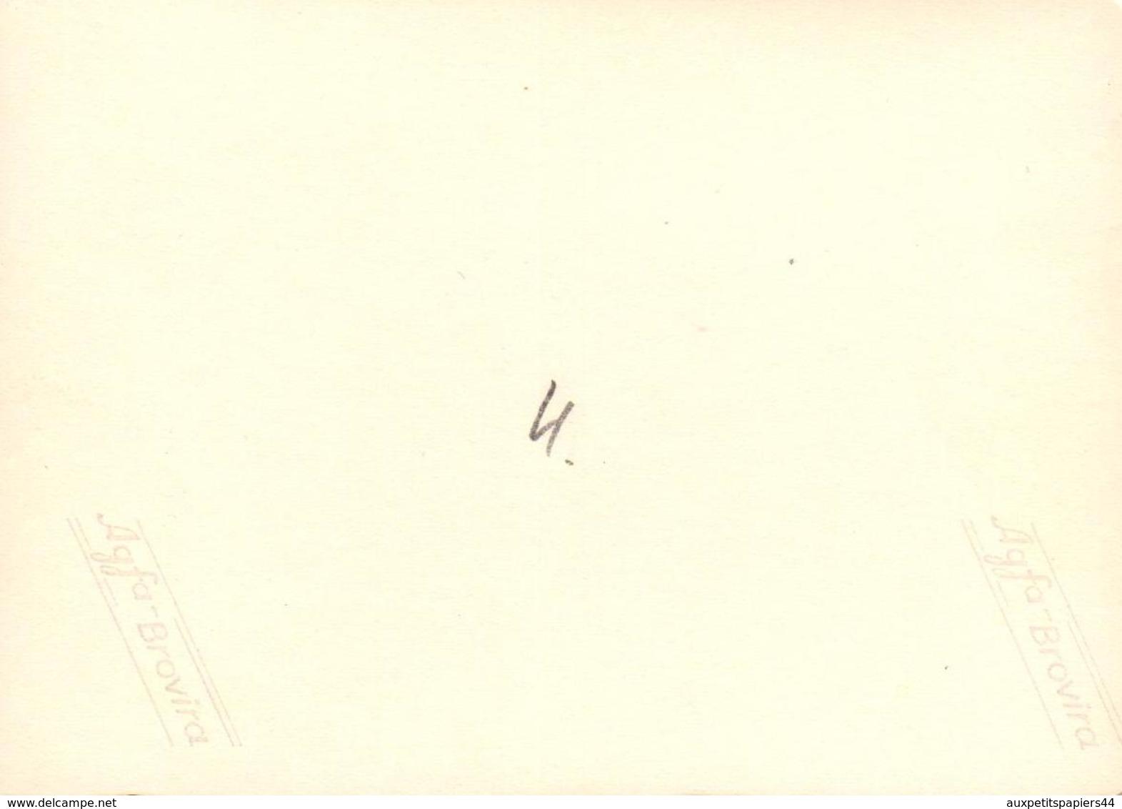 Photo Originale Pin-Up Rondouillette En Mode Bronzette Au Bord De L'eau Vers 1960 - Pin-up