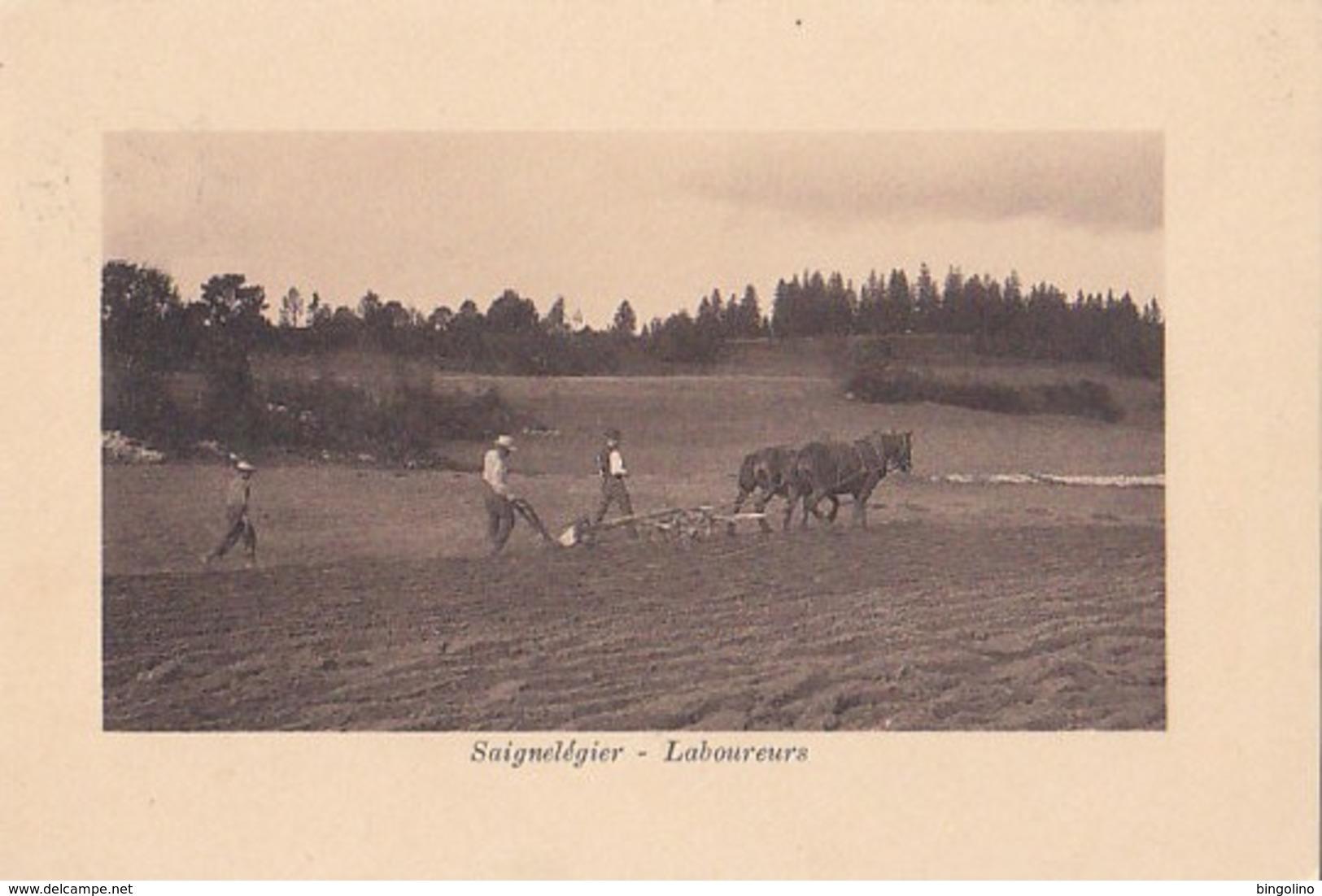 Saignelégier - Laboureurs - 1917      (P-156-30616) - JU Jura