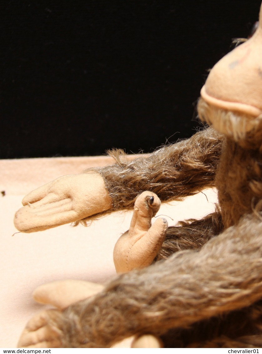 Peluche 154_grand Singe «jocko» Steiff - Steiff Animals