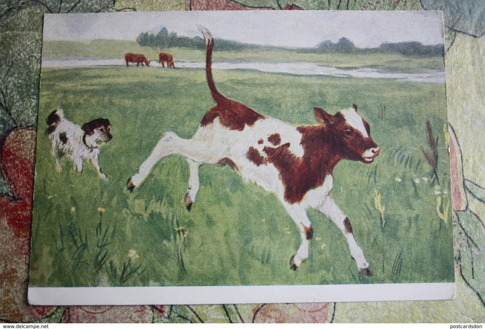 "Cow In Art - OLD USSR Postcard  - Plastov  ""Calf And Dog""  1956 - Vache - Kühe"